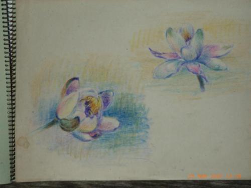 heijnes pastels schetboek (15)