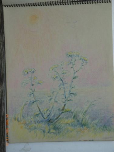 heijnes pastels schetboek (37)