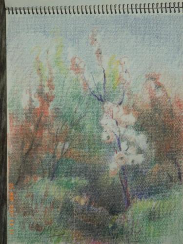 heijnes pastels schetboek (39)