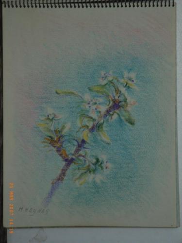 heijnes pastels schetboek (42)