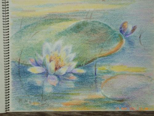 heijnes pastels schetboek (8)