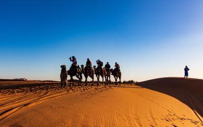 Un biologiste argentin dans le désert marocain – Récit