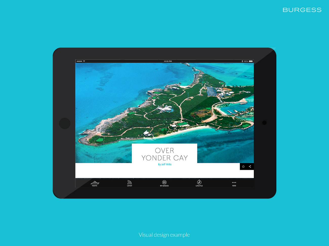 Picture of tablet iOS app visuals