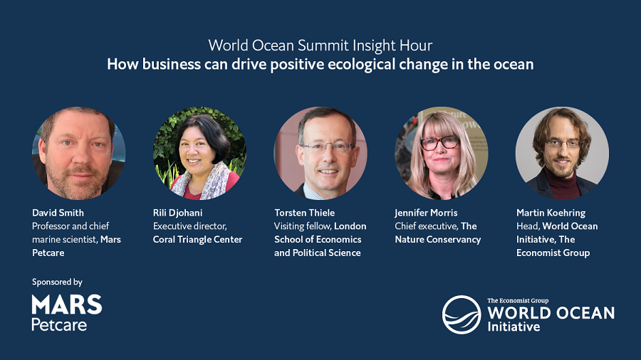 Moderating webinar on business and ocean sustainability