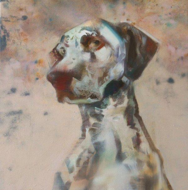 'Dalmatier' 40x40 cm Acrylverf op doek