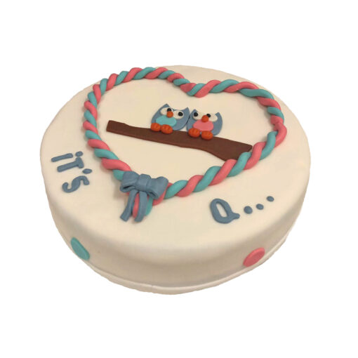 gender reveal geboorte taart uiltjes