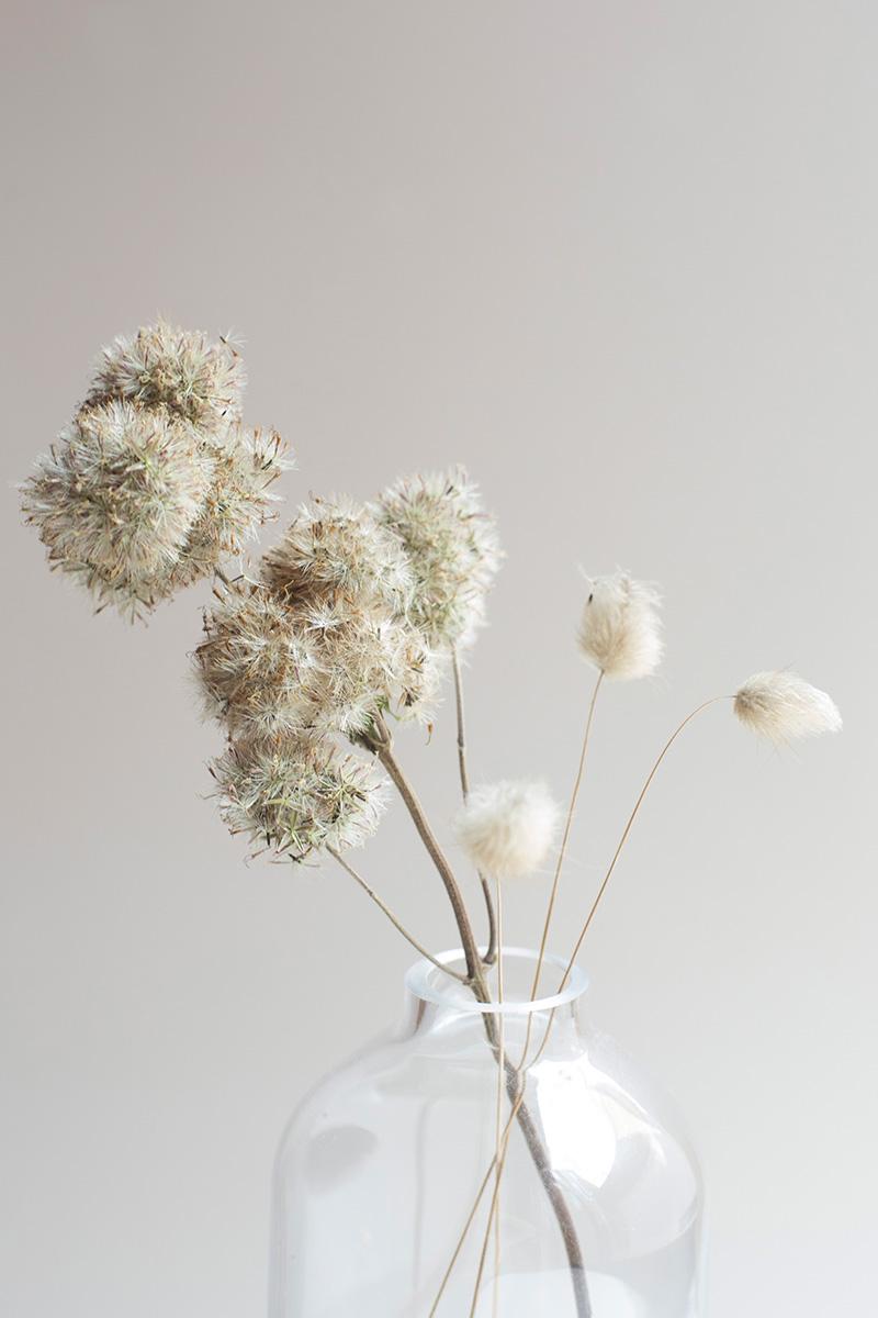 Mise en scène poétique de fleurs séchées réalisée par la Visual Storyteller Mathilde Troussard