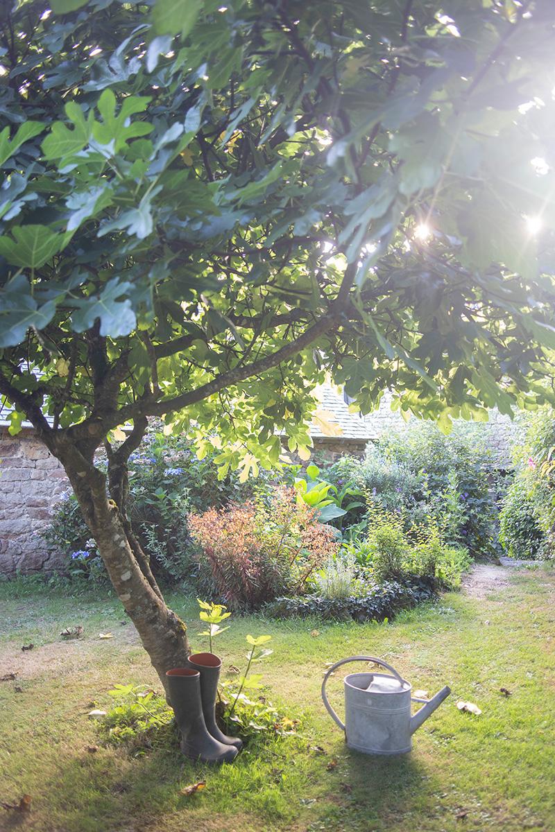 Photographie réalisée par Mathilde Troussard du jardin de la chambre d'hôtes Alcove et Agapes à Langonnet