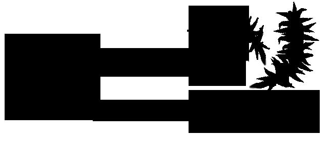 En logotyp till en konsultfirma.