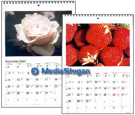 Photo calendar with nature scenes.