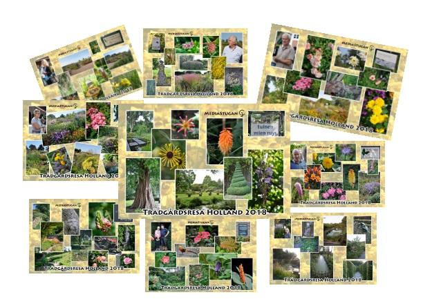 En samling kort på trädgårdar vi besökte...