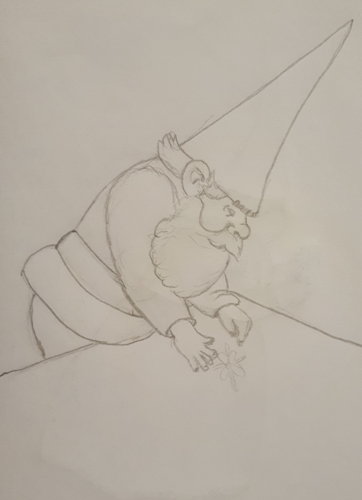 A first sketch of Mr Gnome
