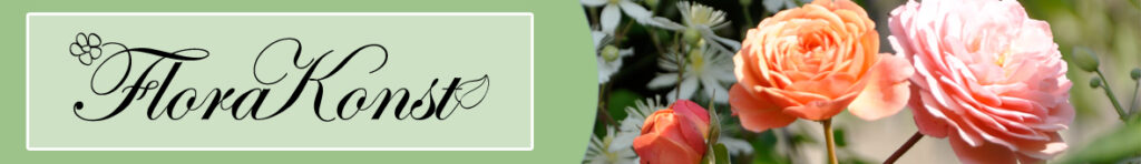 Header with roses and the logo of FloraKonst