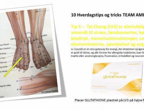 LV3 – leverpunkt – akupunktur