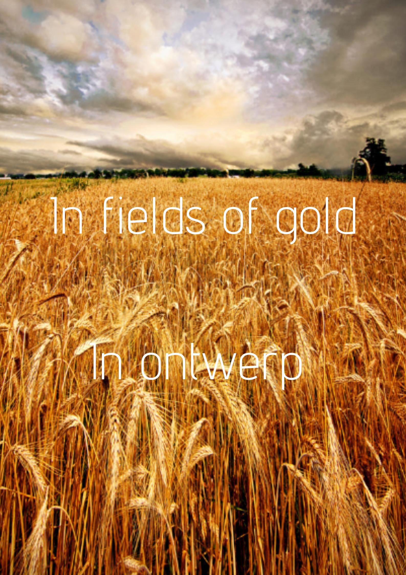 In fields of gold- in ontwerp