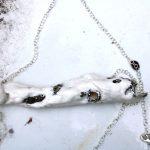 meike janssens - wearable art