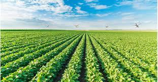 Bekijk hier onze drones Landbouwtoepassingen - Metingen