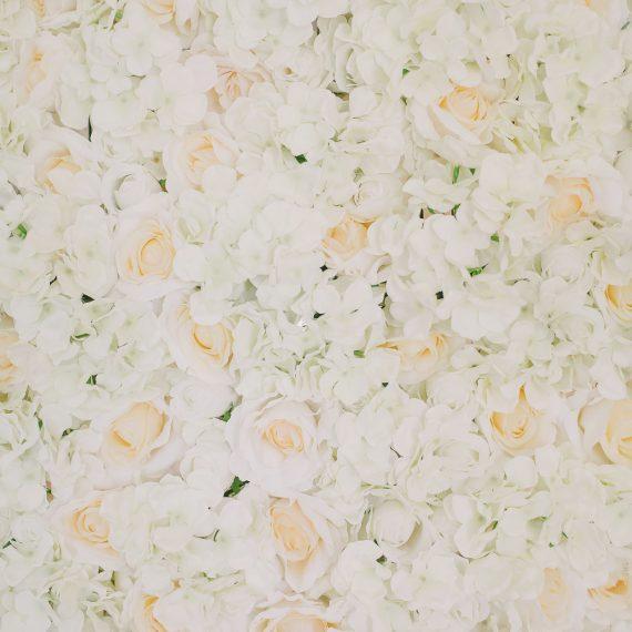 vit blomvägg hyra