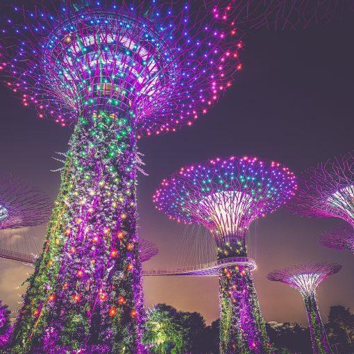Singapore Gardens by he Bay