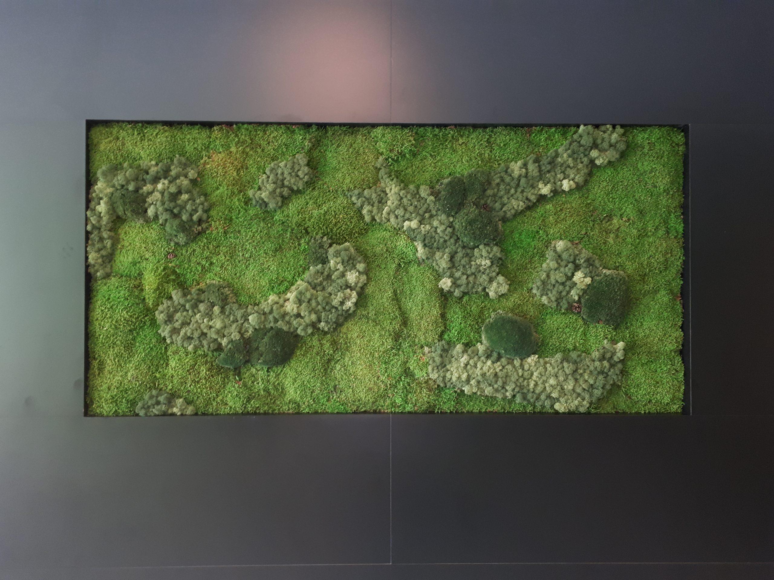 Mosschilderij speciaal op maat gemaakt voor in een nis