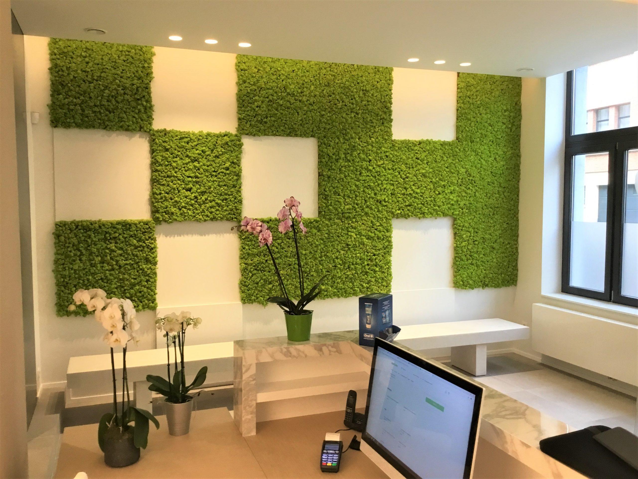 Creatieve wanddecoratie van mos bij een Tandarts