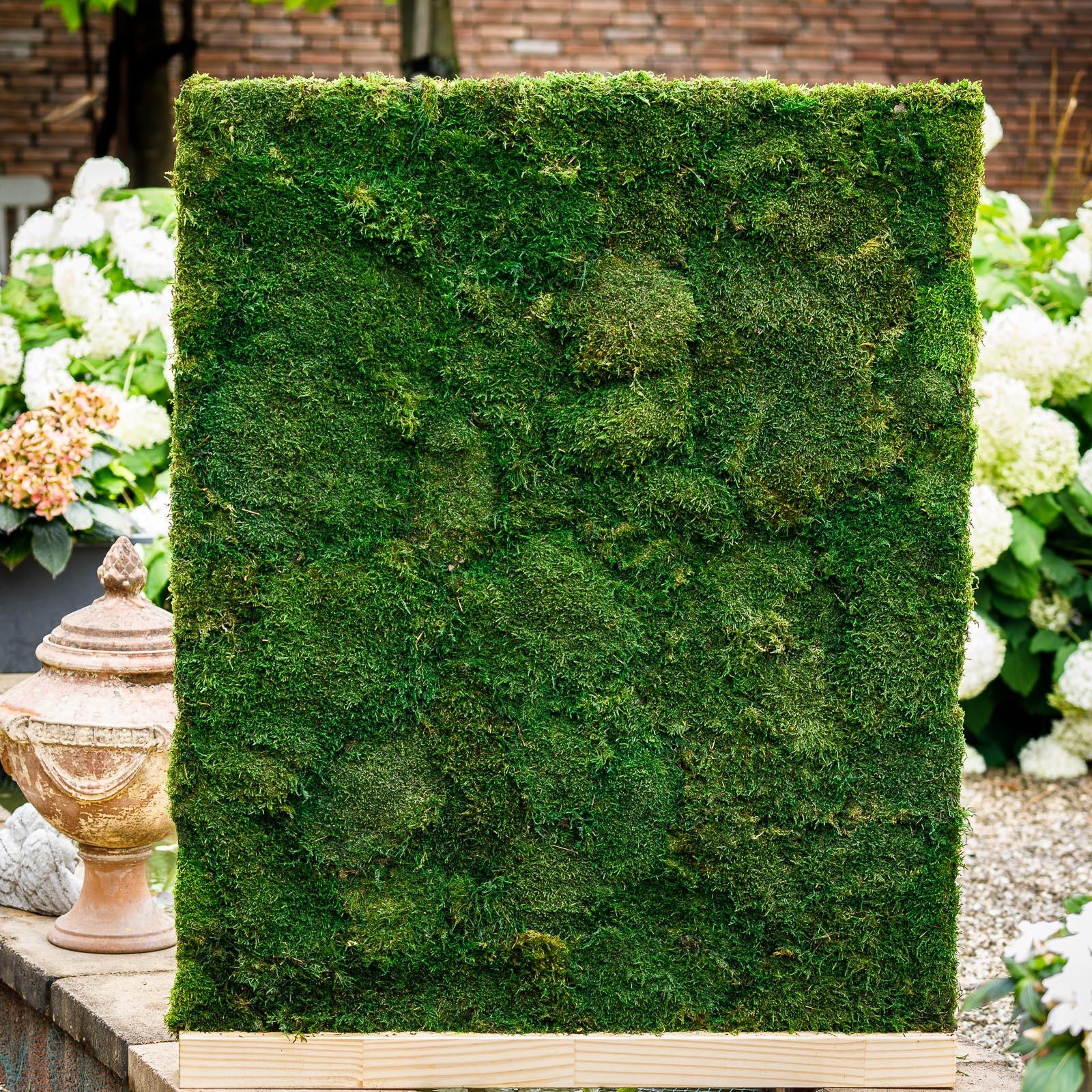 Roomdivider bekleed met natuurlijk en duurzaam mos. Onderhoud is niet meer nodig.