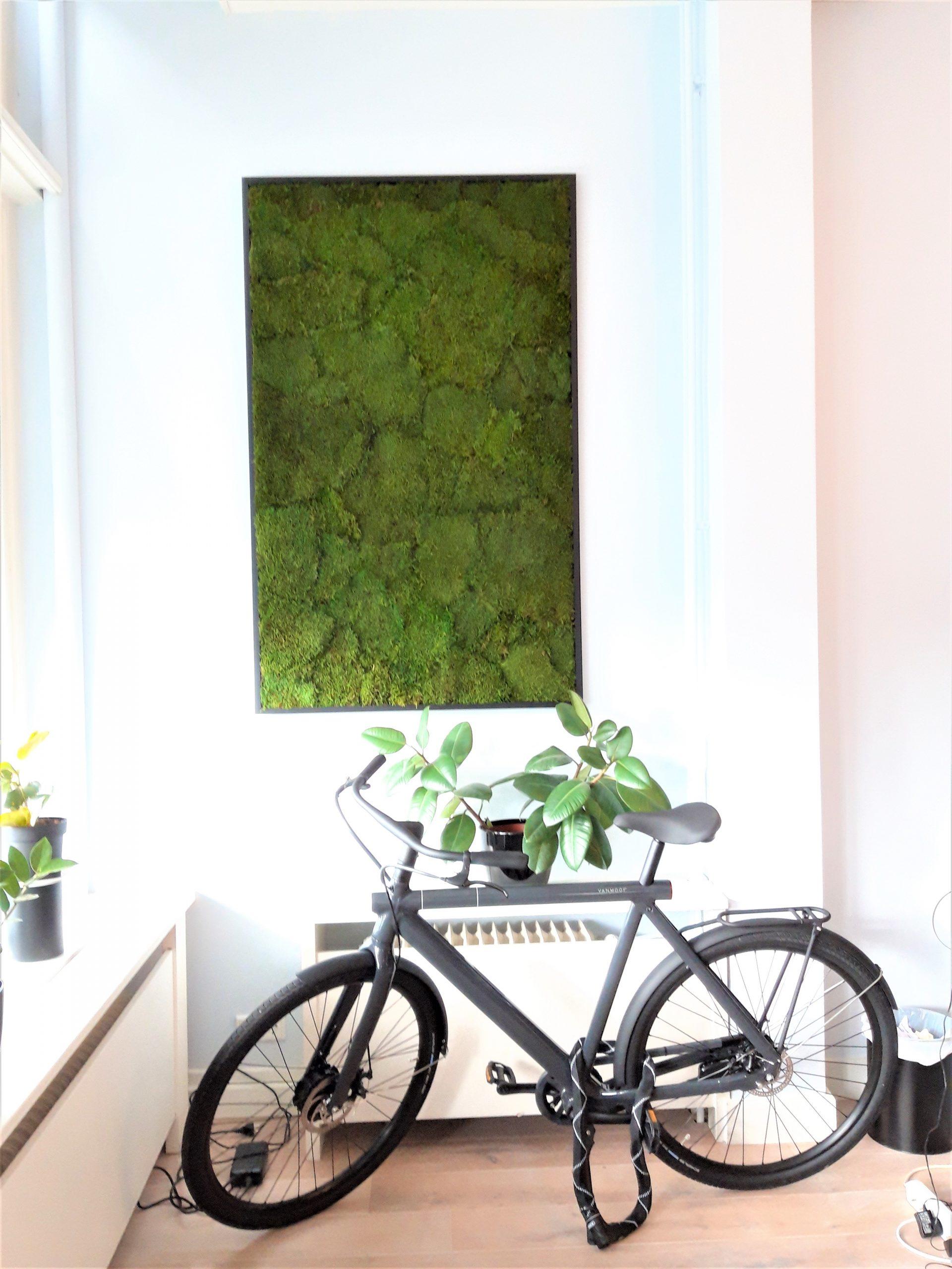 Mosschilderij met echt mos