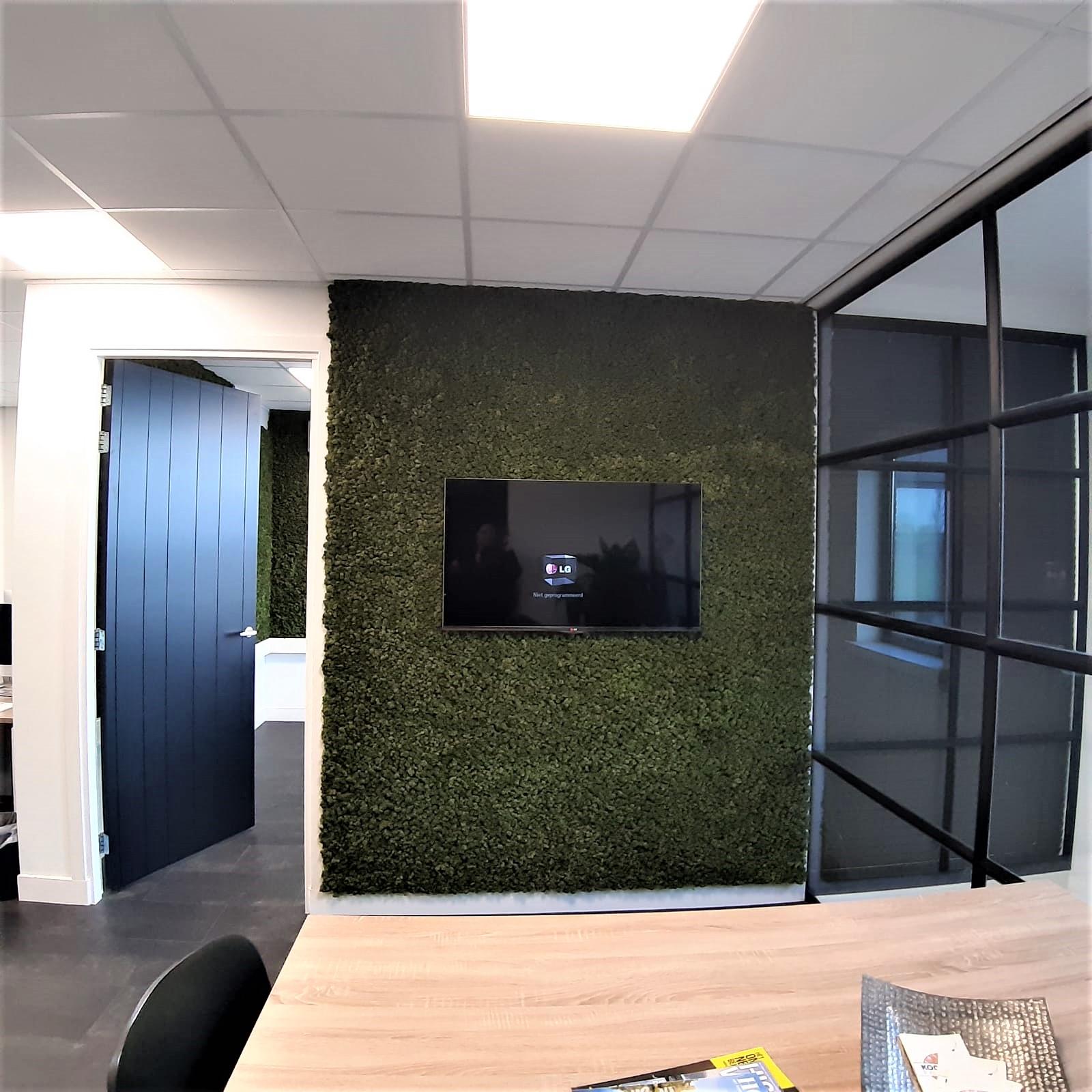 Moswand van rendiermos. Voor decoratie en om de akoestiek te verbeteren in dit modern kantoor waar veel glas en mooie moderne zwarte kozijnen zijn toegepast