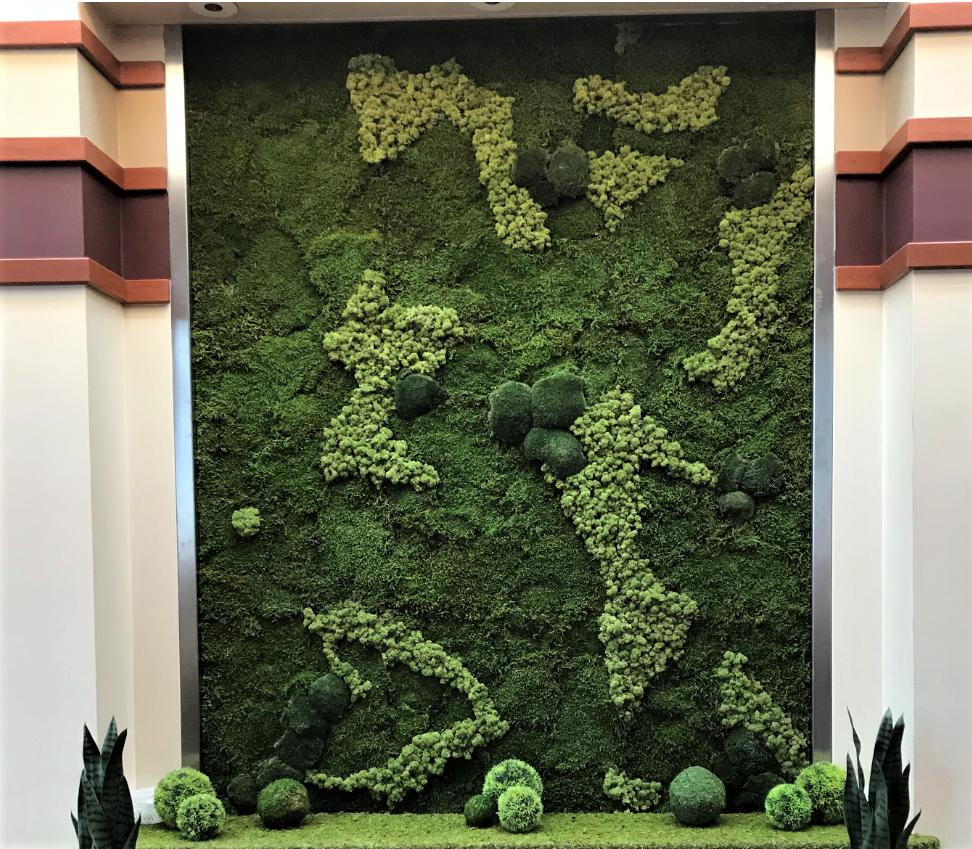 Mosssart schilderij met diverse mossoorten