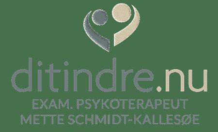 Psykoterapi og parterapi
