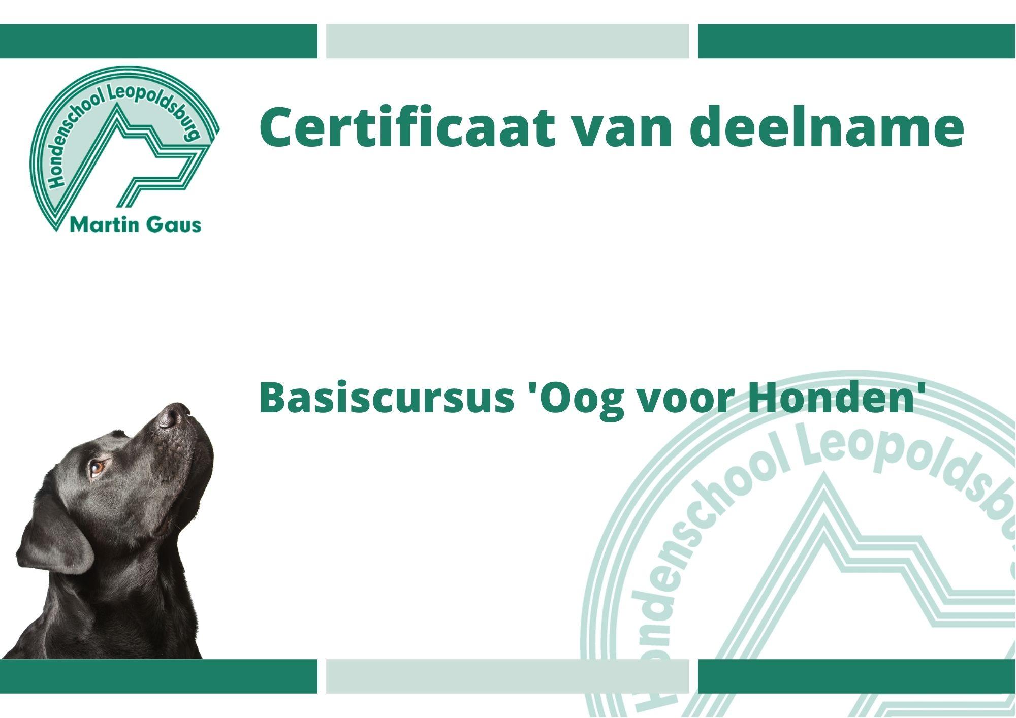 Basiscursus 'Oog voor Honden' – Eindevaluatie
