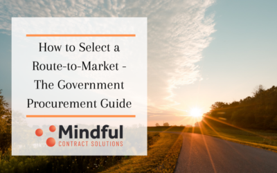 How to select a Route-to-Market – Government Procurement Guide