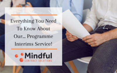 Everything You Need to Know About Our Programme Interims Service
