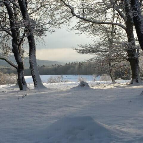 retreat winter