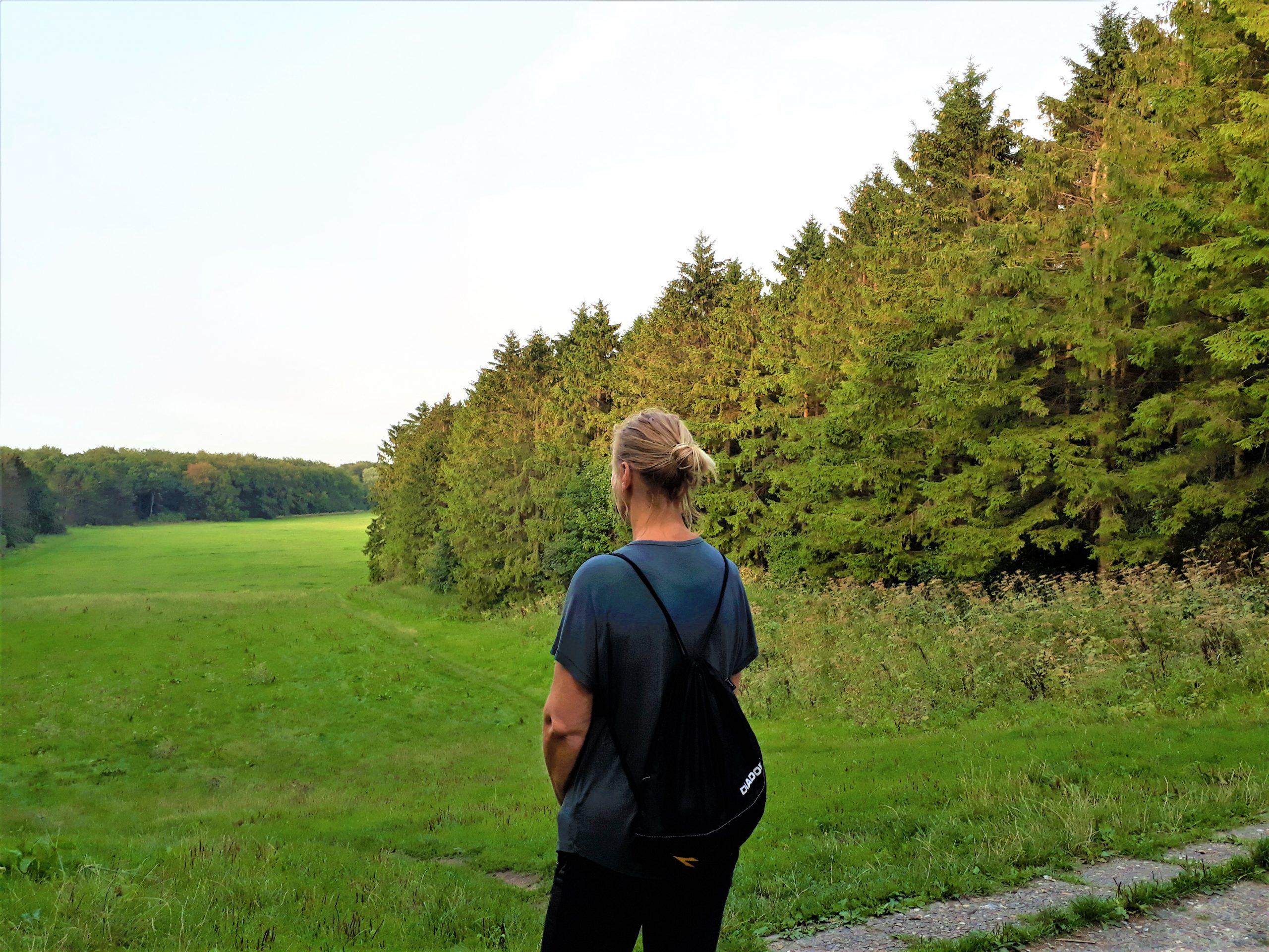 MindWalker, Stil staan tijdens individuele wandelcoaching. MindWalker