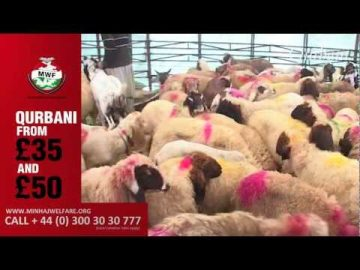 Qurbani 2012 - Minhaj Welfare Foundation (MWF)