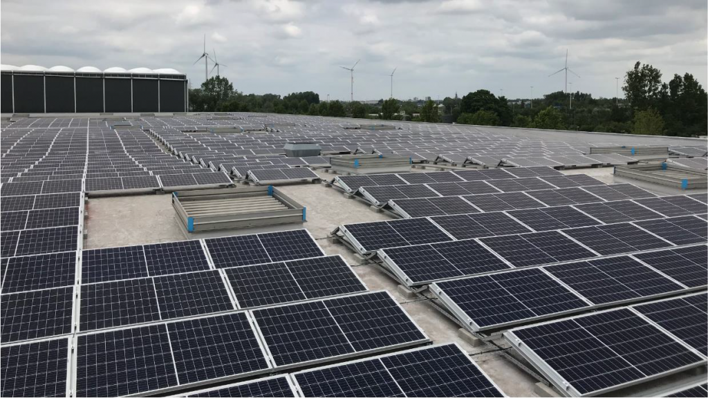 Project: Rooftop Solar - Puurs