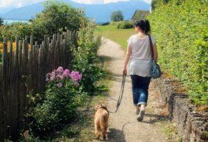 wandelen-met-je-puppy