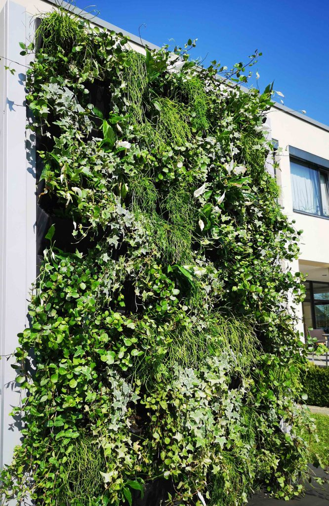 MiBaveno Living Fence verticale groenwand