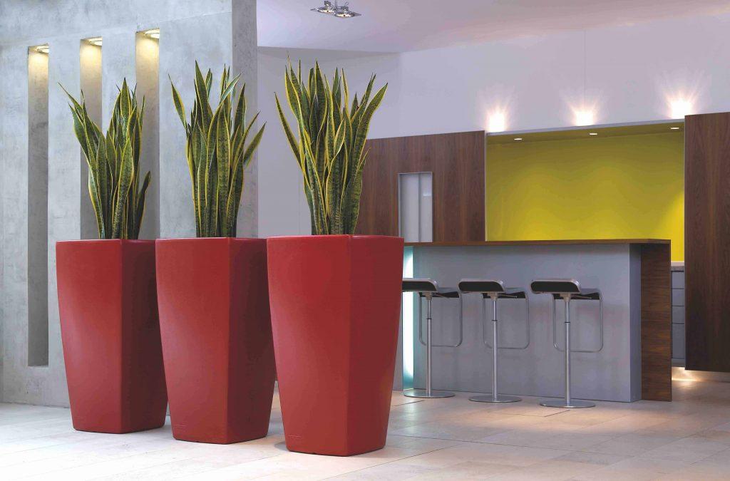 Vuurrode Degardo Trevia bloempotten brengen elegantie binnen in huis
