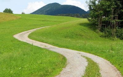 Den Grønne Vej