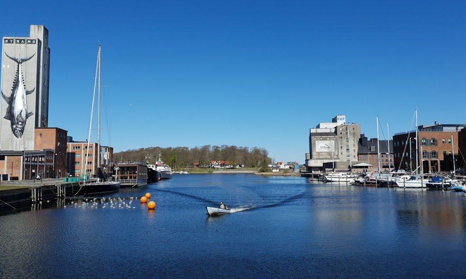 Friheden til at bruge Odense