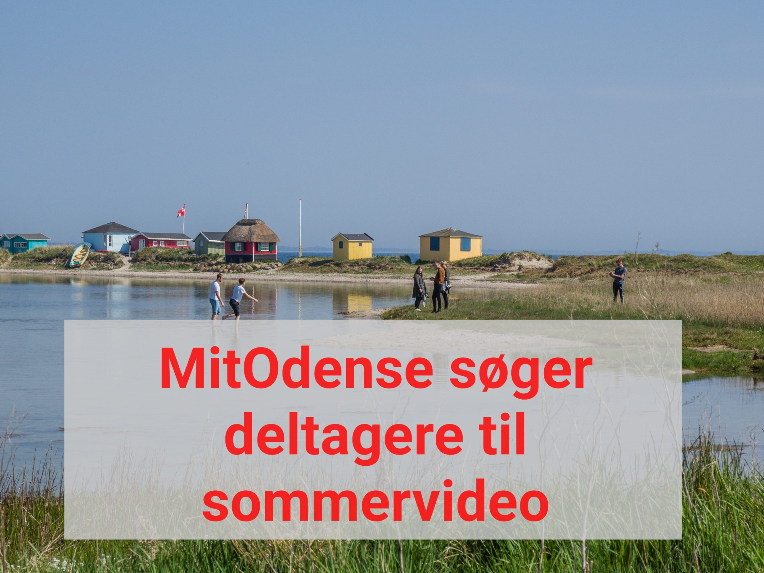 MitOdense søger deltagere til sommervideo