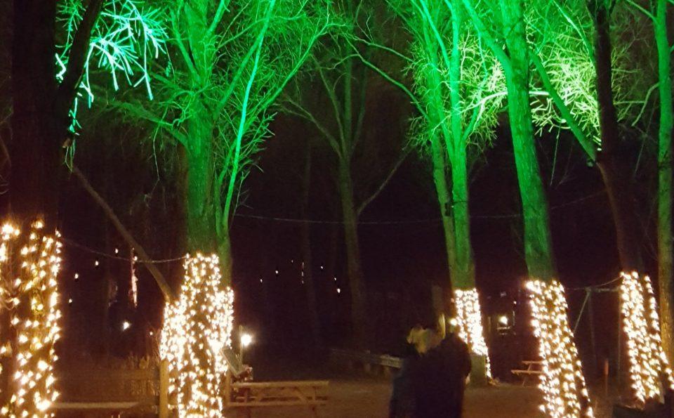 Lyset i mørket hos Odense Zoo blev slukket