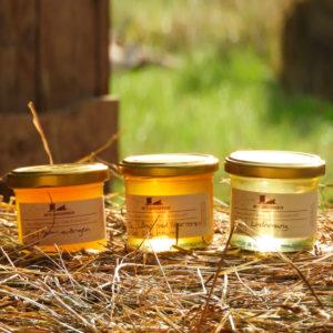 Vår unika guldglimrande honung med smak av sommar på Öland.