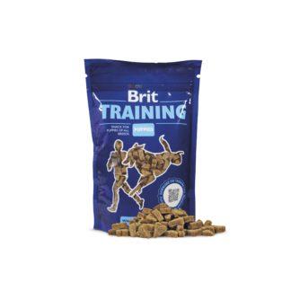 Brit Training