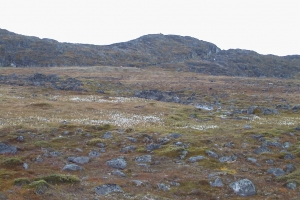 1999-2000 Ilulissat_0114