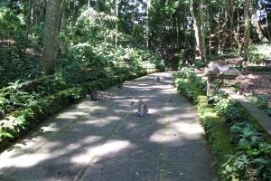 Bali2007_0021