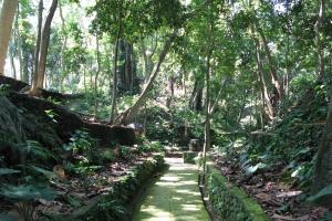 Bali2007_0024