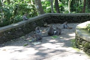 Bali2007_0029